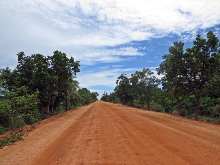 Transpantaneira: Um passeio pelaMT-060